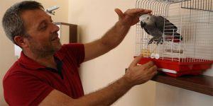 Cuma namazına giderken bulduğu papağanın söyledikleri karşısında şoke oldu
