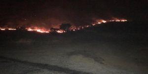 Sınırda orman yangını