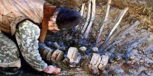 Mamut fosili bulundu