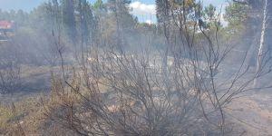 Gebze'de akıl almaz yangın
