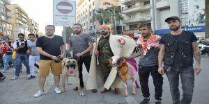 Denizli'de koçlar, İspanya boğa güreşlerinin alternatifi oluyor