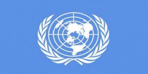 BM'den Suudi Arabistan ve BAE'ye soğuk duş!