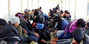 Düzensiz yurda giren 49 göçmen yakalandı
