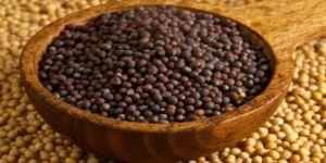 Hardal tohumunun faydaları nelerdir?