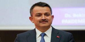 Bakan Pakdemirli'den fındık açıklaması