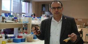 AIDS tedavisinde 'propolis' şifası
