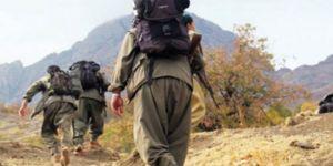 Terör örgütü PKK/PYD'de iç hesaplaşma: 2 terörist infaz edildi