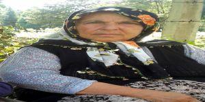 Yaşlı kadın eviyle birlikte yandı