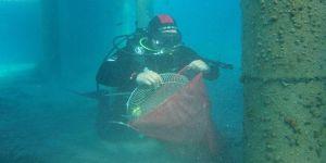 Deniz dibi temizliği