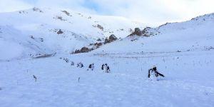 PKK'nın kış üslenmesine yönelik operasyon