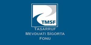 TMSF, iki şirketi satışa çıkardı