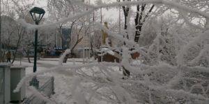 Doğu'da soğuk hava