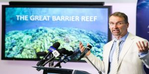 Kuzey Avustralya'daki yağmur suları mercan örtüsüne tehlike oluşturdu