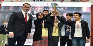 Okullar Arası Satranç Turnuvası'nın galipleri belli oldu