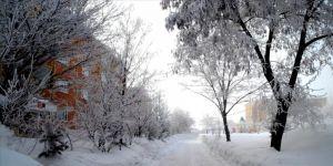Doğu Anadolu'da kar etkisini sürdürüyor