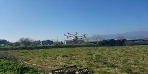 Aydın'da Drone İle İlaçlama Yapıldı