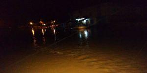 Ceylanpınar'da Yağışlarda 20 Hayvan Telef Oldu