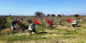 Üzüm Bağları Türk Bayraklarıyla Donandı