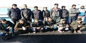 Yol Uygulamasında 14 Kaçak Göçmen Yakalandı