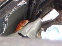Otomobilin Kaputundan Engerek Yılanı Çıktı,Sürücü Şoka Girdi..!