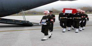Şehidin cenazesi Tokat'a getirildi