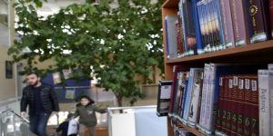 Limon Ağaçlı Kütüphane İlgi Çekiyor