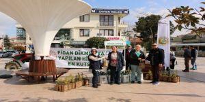 Düzce'de 5 Bin Ücretsiz Fidan Dağıtıldı
