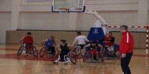 Tsb Milli Takımı, Avrupa Şampiyonası İçin İddialı