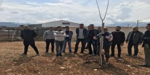 Aü Seracılık Bölümü Öğrencileri Ceviz Ve Mantar Üretimini Yerinde Gördü