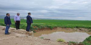 Kızıltepeli Çiftçiler Yoğun Yağışlardan Tedirgin