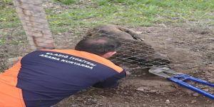 Tellere Sıkışan Köpeği İtfaiye Kurtardı