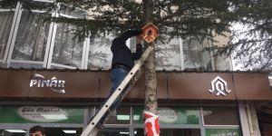 Çukurca'da Kuşlar İçin Ağaçlara 100 Adet Yuva Yerleştirildi