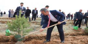 Rektör, Şehit Polis memuru Semih Turgut anısına fidan dikti