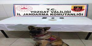 Jandarma'dan Esrar Operasyonu: 4 Şüpheli Gözaltına Alındı