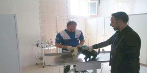 Hakkari'de Yaralı Kedi Kurtarıldı