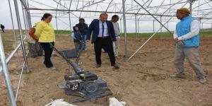 Aksaray'da Tarım Ve Orman Müdürlüğü Ekipleri Seralarda İncelemede Bulundu