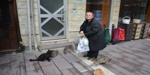 Mahalledeki onlarca kediyi besliyor