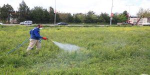 Haliliye'de Larva İle Mücadele Çalışmaları Sürüyor