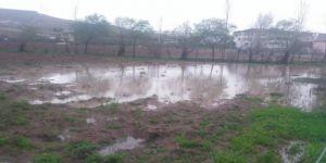 Yağış, Ekinlere Zarar Verdi