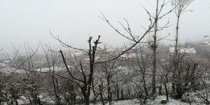 Nisan Ayında Lapa Lapa Kar Yağışı