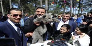 60 Türden 450 Adet Hayvan Macera Parkında