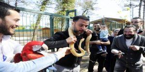 Alişan'ın Yılanla İmtihanı