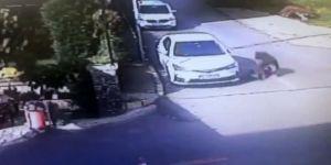 Tuzla'da Çocuğu Öldüresiye Döven Şahıs Yakalandı