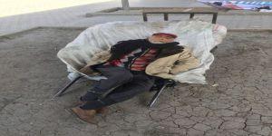 Atık toplayan yaşlı adam el arabasında uyuya kaldı