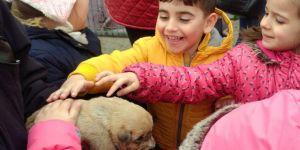 Çorlu Belediyesi Geçici Hayvan Bakımevi İle Can Dostlarının Yanında Yer Alıyor