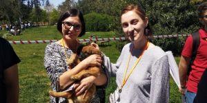 Adana'da Erasmus Öğrencileri Sokak Hayvanlarını Besledi, Barınakları Ziyaret Etti