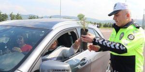 Sürücülere 5 Bin Adet Çam Fidanı Dağıtıldı