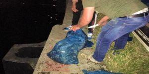 72 bin liralık kum midyesi ele geçirildi