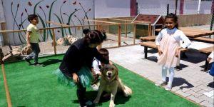 Ana Okulunda barınaktan alınan köpeği çocuklar arkadaş edindi