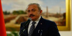 TBMM Başkanı Mustafa Şentop: Meclisimizde güvenlikle ilgili iyi işleyen bir sistem var